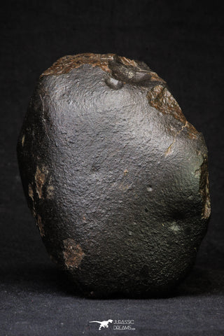 21262 - Huge Almost Complete NWA L-H Type Unclassified Ordinary Chondrite Meteorite 2306g (Fusion Crust)