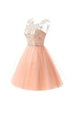 Blush Pink Tulle Beaded Short Homecoming Dress Party Gowns Prom Dresses LD561