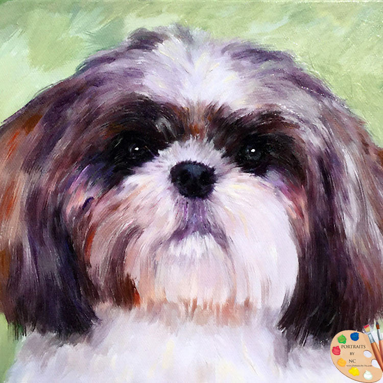 products/lhasa-apso-portrait-494.jpg