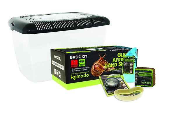 Komodo Giant African Land Snail Kit