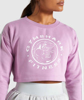 Gymshark Legacy Fitness Sweater - Pink 11