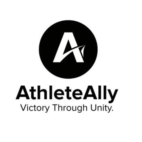 Athlete Ally: Developing an Online Curriculum on LGTBQ Issues in Sports