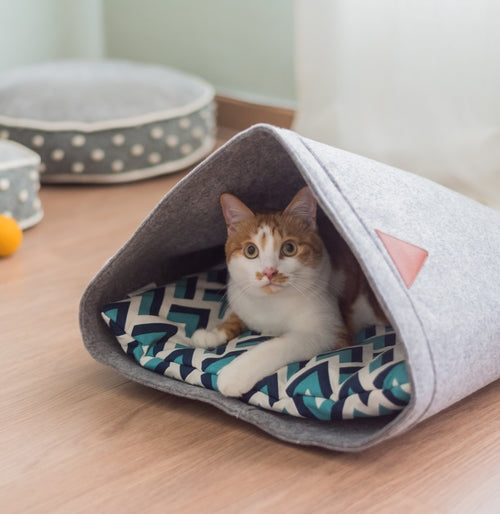 PET CAVE JACK Pet Bed | Pets | Witty Novelty