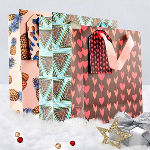 Build A Pack of 5 Gift Bags