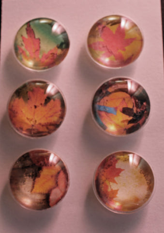 Fall Leaves Glass Gem Super Strong Magnets