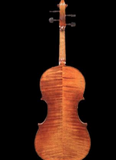 D Z Strad Cello Model 1100