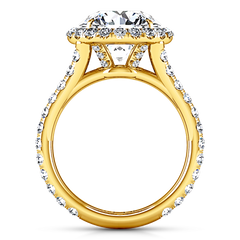 Halo  Engagement Ring Emotion 14K Yellow Gold