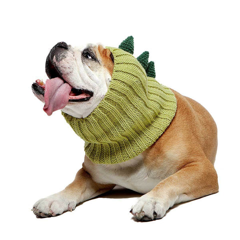 Dog Costume Dinosaur Zoo Snood
