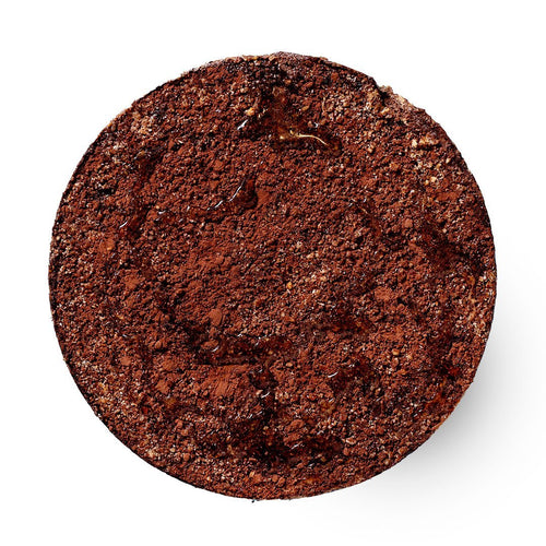 Chocodate Crumb Pie - Raw ME