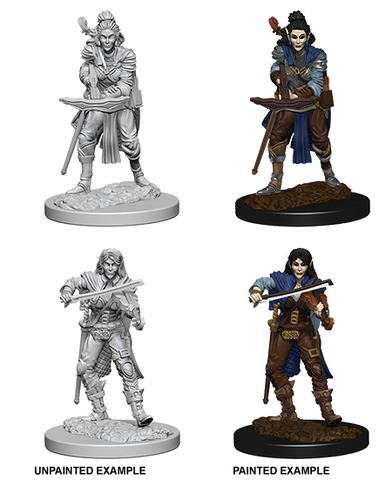 WZK72611 Elf Female Bard (2 minis) - Pathfinder Deep Cuts