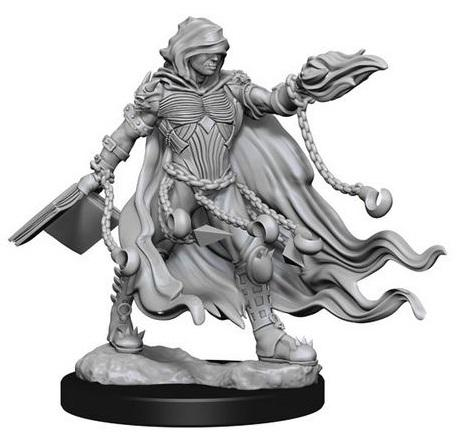 WZK72586 Evil Wizards (2 minis) - Pathfinder Deep Cuts