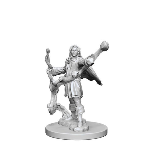 WZK72605 Elf Male Sorcerer (2 minis) - Pathfinder Deep Cuts