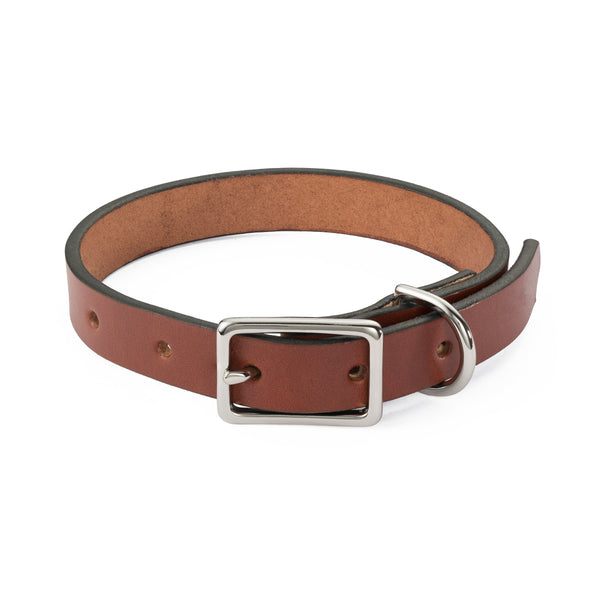 Medium Brown Dog Collar