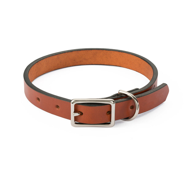 Chestnut Dog Collar