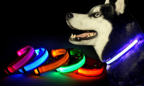 Nylon LED Pet Safety Collar