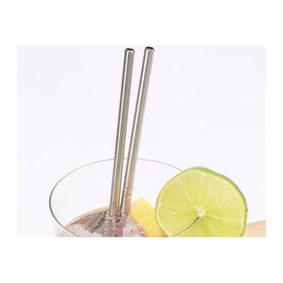 Stainless Steel Straws Set of 10 - MeMe Antenna