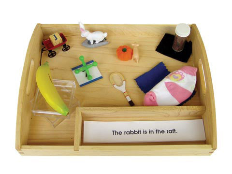 Blue Interpretive Sentences with Objects and Tray