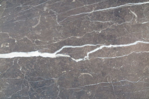 "New Saint Laurent Marble Tile - 18"" x 18"" x 1/2"" Polished"