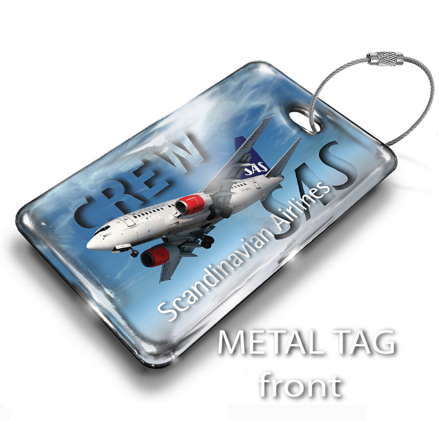 SAS Landscape B737 Silver Background