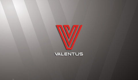 Valentus Pro Business card - AGENTestore