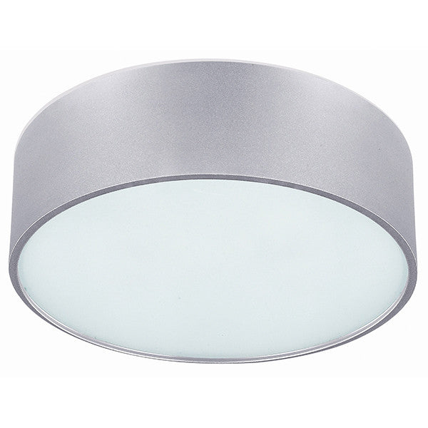 Canarm Dexter Flush Mount Ceiling Light