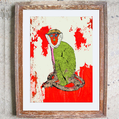 "Signed Print / ""The Staring Monkey"""