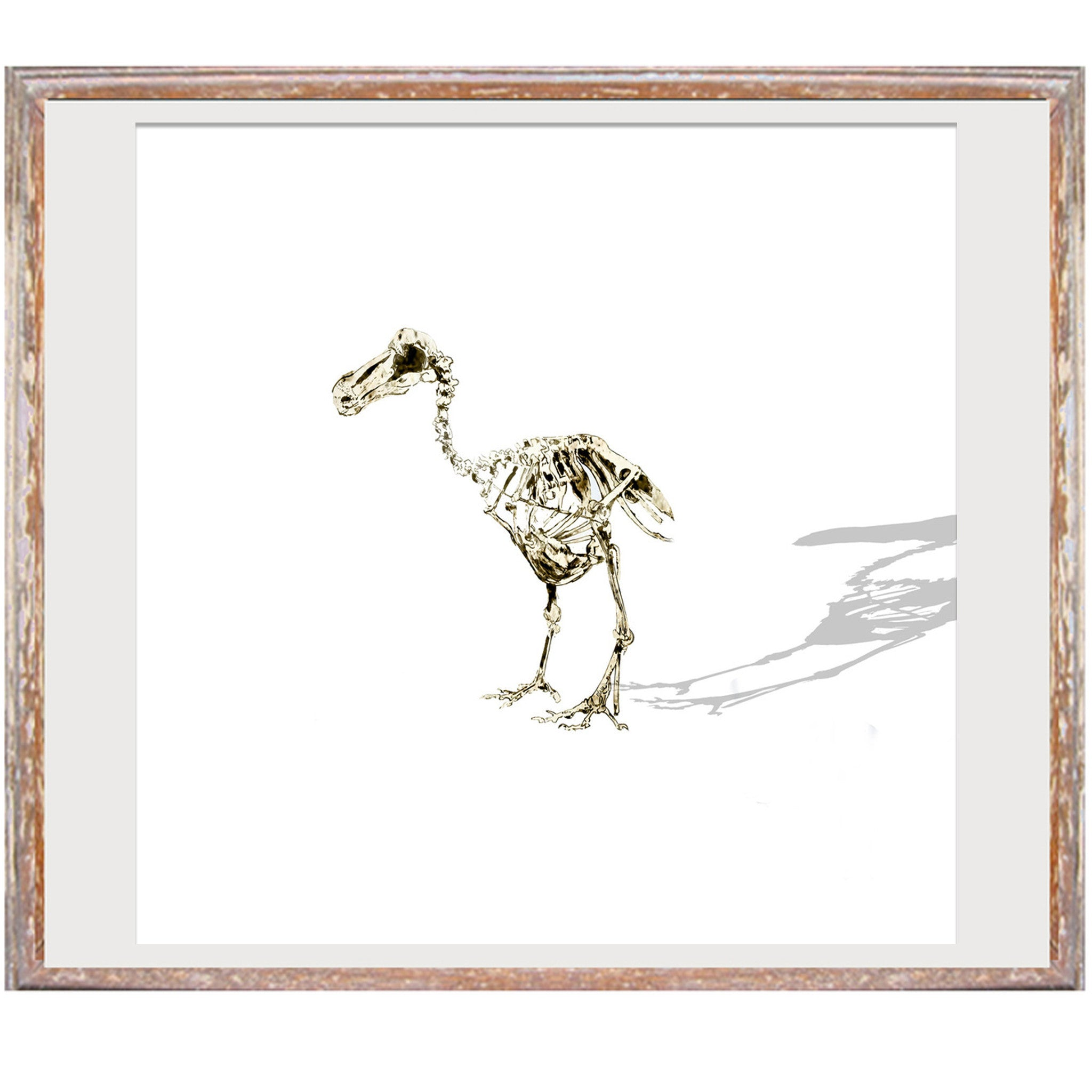 "Signed Print / ""The Lonely Dodo"""