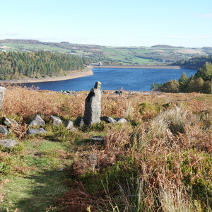Dog Walk - Langsett Reservoir [Yorkshire, England]