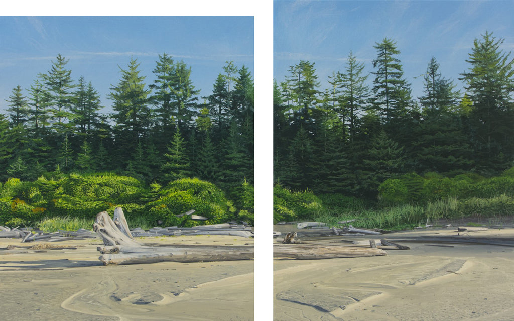 Beach and Forest