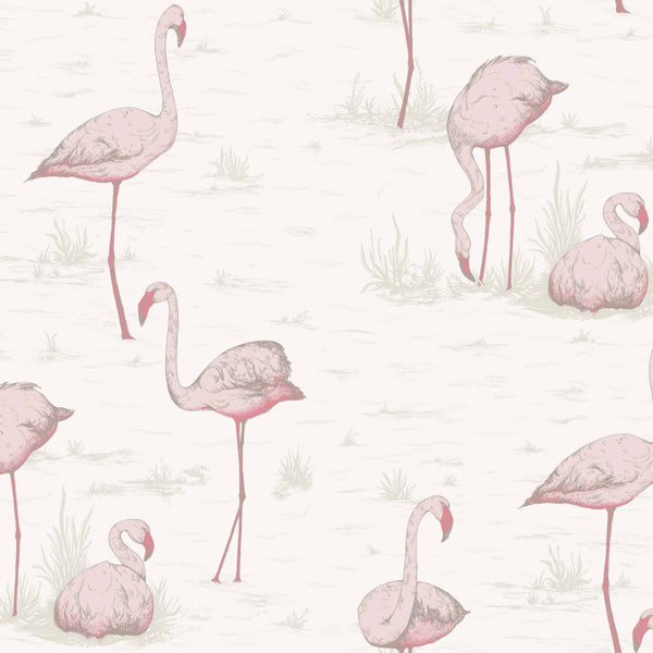 Flamingos - Pink On White