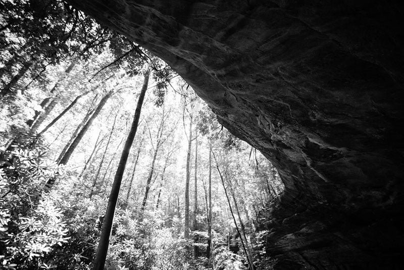 Black and white landscape photograph of the Indian Rockhouse on the Cumberland Plateau of East Tennessee. This large natural rock shelter was used by Native Americans up to 15,000 years ago.