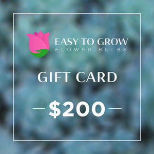 products/ETGB-GiftCard-200.jpg