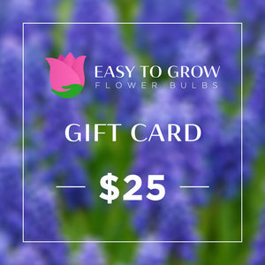 products/ETGB-GiftCard-25.jpg