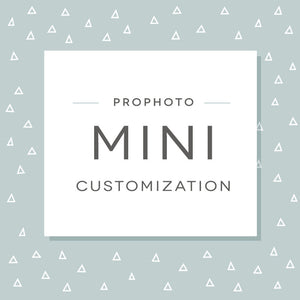 ProPhoto Mini Customization