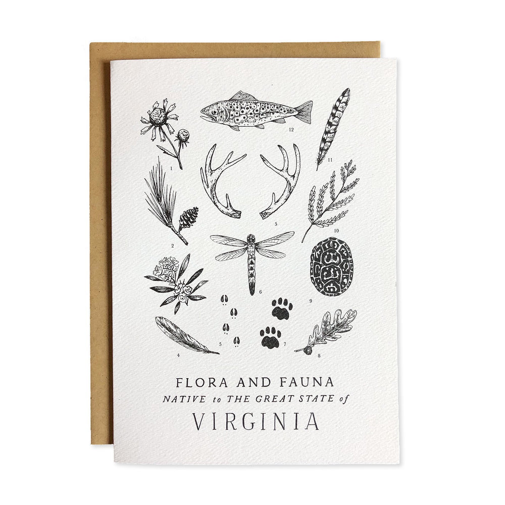 Field Guide Greeting Cards