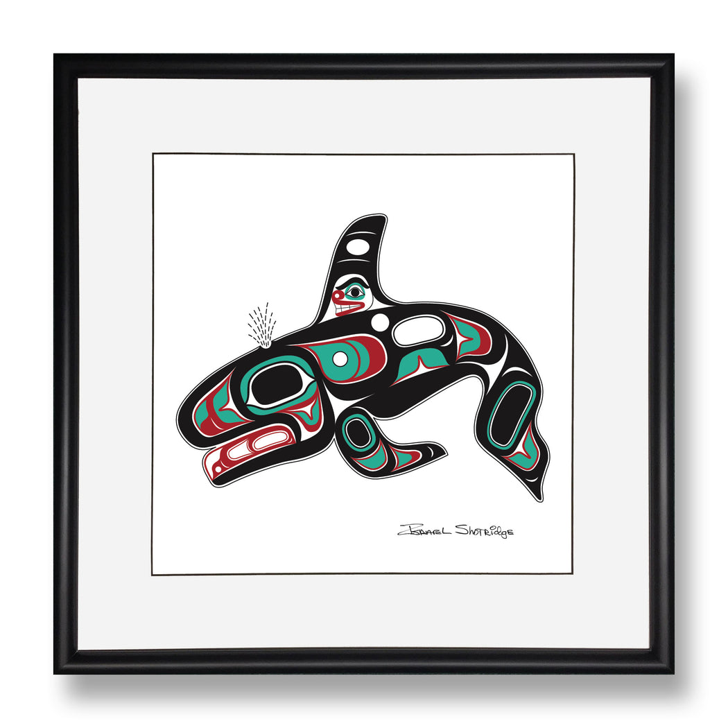 """Killer Whale"" Limited Edition Art Print - Shotridge.com"
