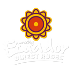 Ecuador Direct Roses