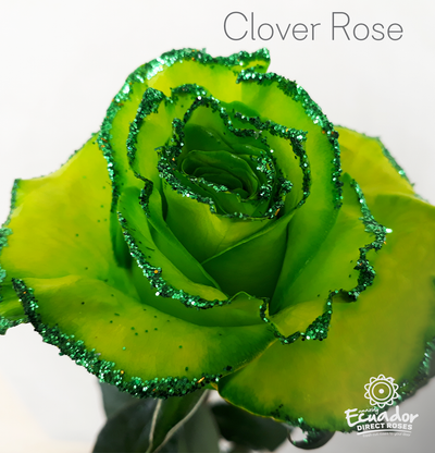 CLOVER ROSE - Glitter Tinted Rose
