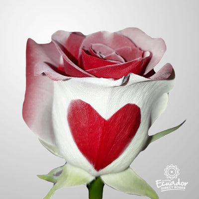 HEART ROSE - Heart design