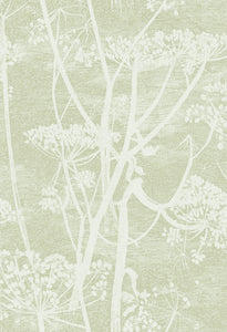 Cole & Son Cow Parsley 112/8029