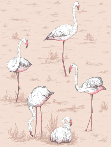 Cole & Son Flamingos 112/11039