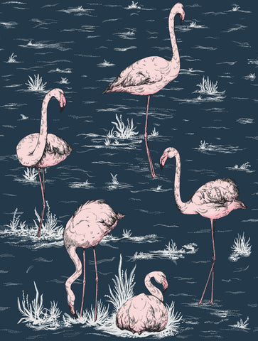 Cole & Son Flamingos 112/11041