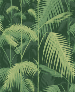 Cole & Son Palm Jungle 112/1003