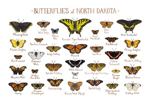 Wholesale Butterflies Field Guide Art Print: North Dakota
