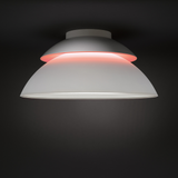 Philips Hue White and Color Ambiance Beyond Ceiling Light