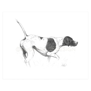 English Pointer in Pencil, Print