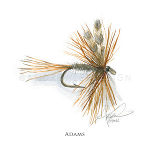 Fly - Adams Pattern