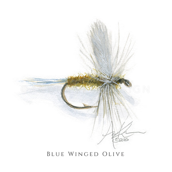 Fly - Blue Winged Olive Pattern