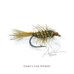 Fly - Hare's Ear Nymph Pattern