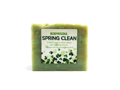 Spring Clean Soap Bar - Masculine Invigorating Aroma